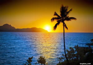 Holiday & Travel Guide For Fiji